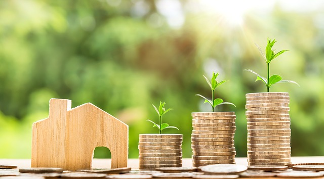 investissement immobilier options neuf ancien